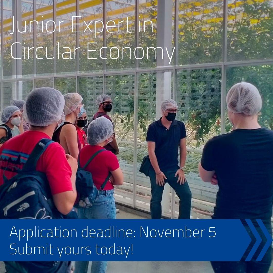 Junior Expert in Circular Economy 2022